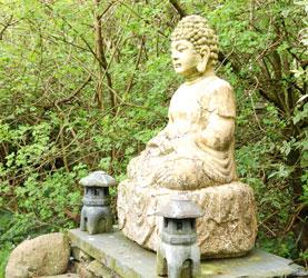 Shiatsu in the Mountains